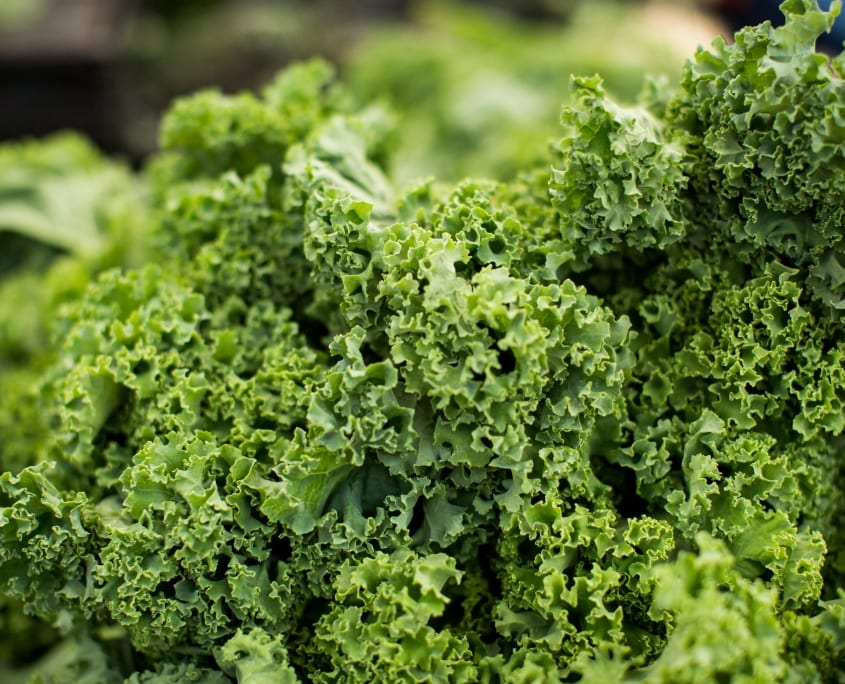 kale, a high protein vegetable